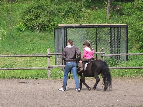 Zoo Toruń 2008