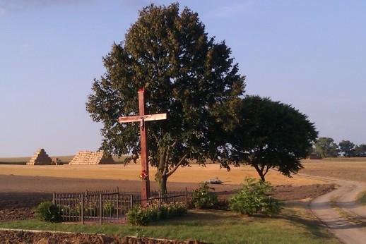 südlich von Chełmno in der Nähe des Dorfs Osnowo
