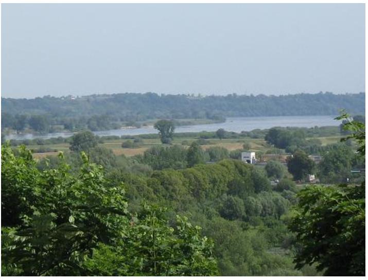 Weichseltal bei Chełmno